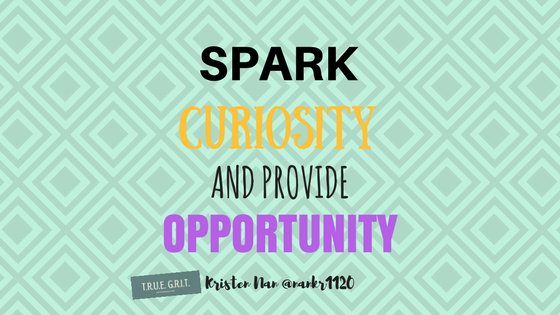 Spark Curiosity and Provide Opportunity for Students